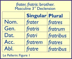 Latin declension fratre Fig1